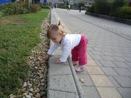 kakilva fogyni)
